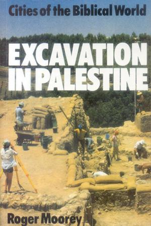 Excavation in Palestine