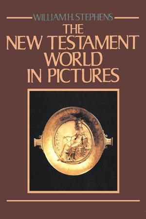 The New Testament World in Pictures